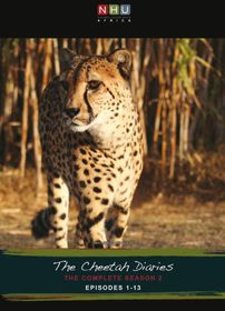 Cheetah Diaries 2 (4DVD)