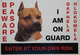 Beware Of The Dog Sign - Staffie