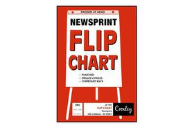 Croxley JD592 Newsprint Punched Flip Chart Paper (50 Sheets)