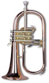 Mason AL-309P Bb Standard Flugelhorn with Case
