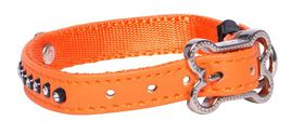 Rogz Lapz 8mm Extra Small Luna Pin Buckle Dog Collar - Orange
