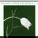 Astor Piazolla - El Tango (CD)