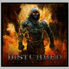 Indestructible - (Import Vinyl Record)