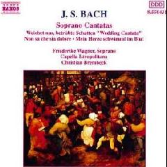 Friederike Wagner / Capella Istropoitana - Cantatas Bwv199, 202 & 209 (CD)