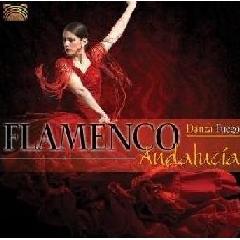 Danza Fuego - Flamenco Andalucia (CD)