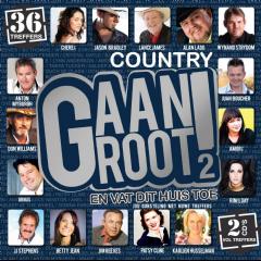 Country Gaan Groot - Vol.2 - Various Artists (CD)