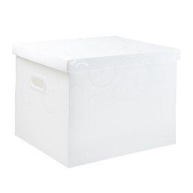 Meeco Creative Collection P.P Archive Size Storage Box - White