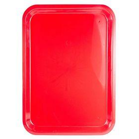 Lumoss - Plastic Rectangle Tray 42 cm x 30 cm - Red