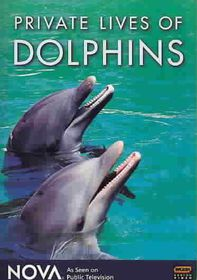 Private Lives of Dolphins - (Region 1 Import DVD)