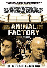 Animal Factory  - (Import DVD)