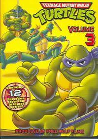 Teenage Mutant Ninja Turtles Vol 3 - (Region 1 Import DVD)