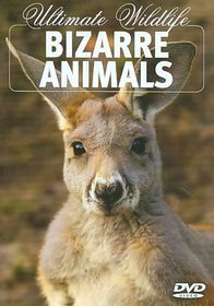 Bizarre Animals - (Region 1 Import DVD)