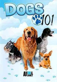 Dogs 101 - (Region 1 Import DVD)