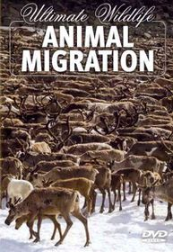 Ultimate Wildlife:Animal Migration - (Region 1 Import DVD)