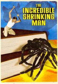 Incredible Shrinking Man - (Region 1 Import DVD)
