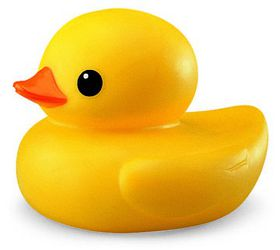 Tolo - Toys Bath Duck