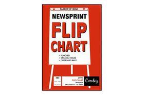 Croxley JD592 Newsprint Punched Flip Chart Paper (50 Sheets)