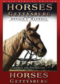 Horses of Gettysburg - (Import DVD)